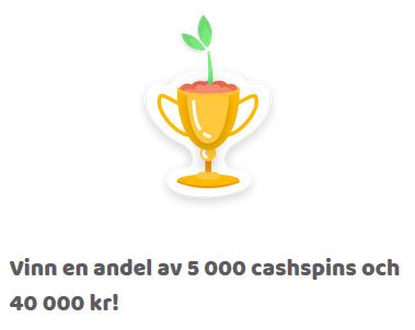 Nätcasino Fruity Casa - Vinn upp till 150 cashspins i veckans snurrutmaning!