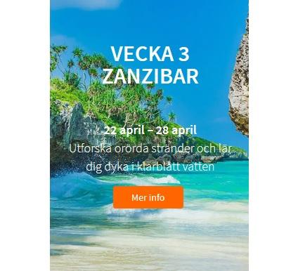 Vinn resan till Zanzibar hos Betsson!